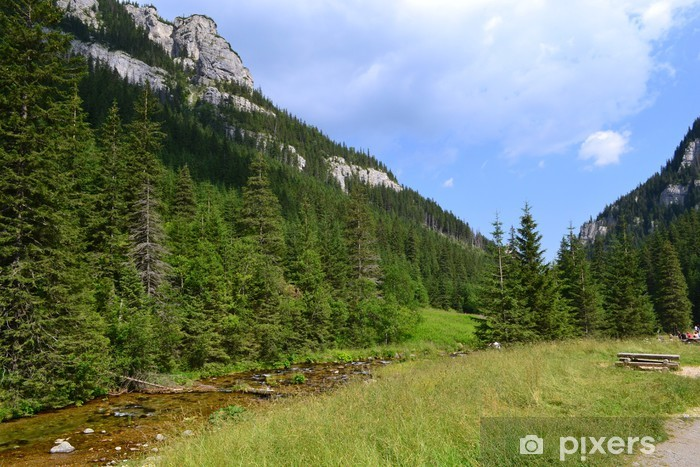 Vinyl Fotobehang Tatra Mountains.Kościeliska Valley.Poland - Vakantie