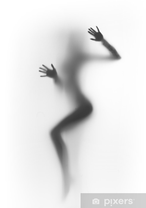Beautiful and sexy dancer woman silhouette Vinyl Wall Mural - Other Feelings