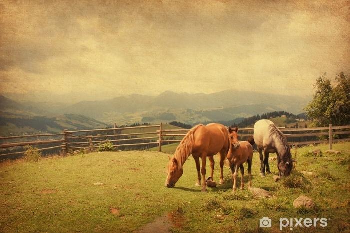 Afwasbaar Fotobehang Twee paarden en veulen in weide. papier textuur. - Dieren