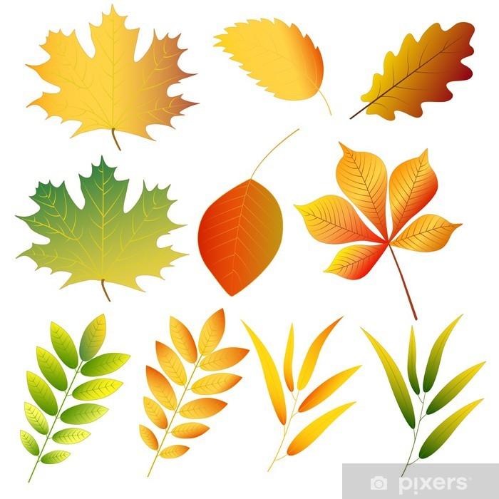 Naklejka Pixerstick Jesienne liście - Pory roku