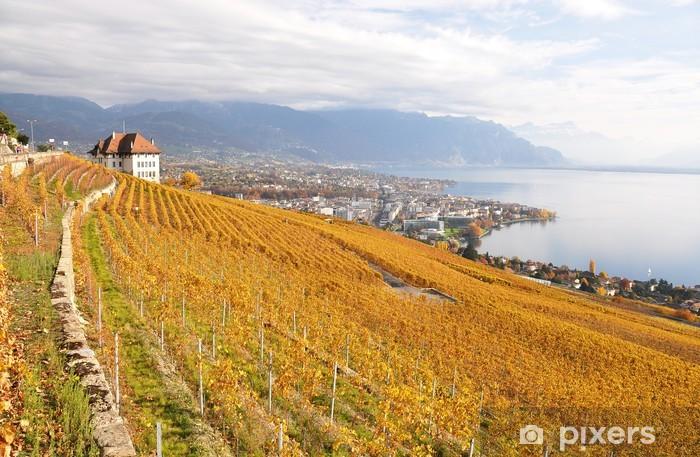 Vinyl-Fototapete Weinberge im Lavaux, Schweiz - Landwirtschaft