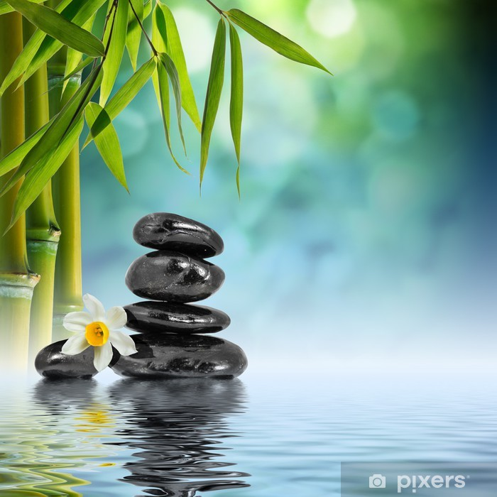 Stones and Bamboo on the water with narcissus flower Pixerstick Sticker - Themes
