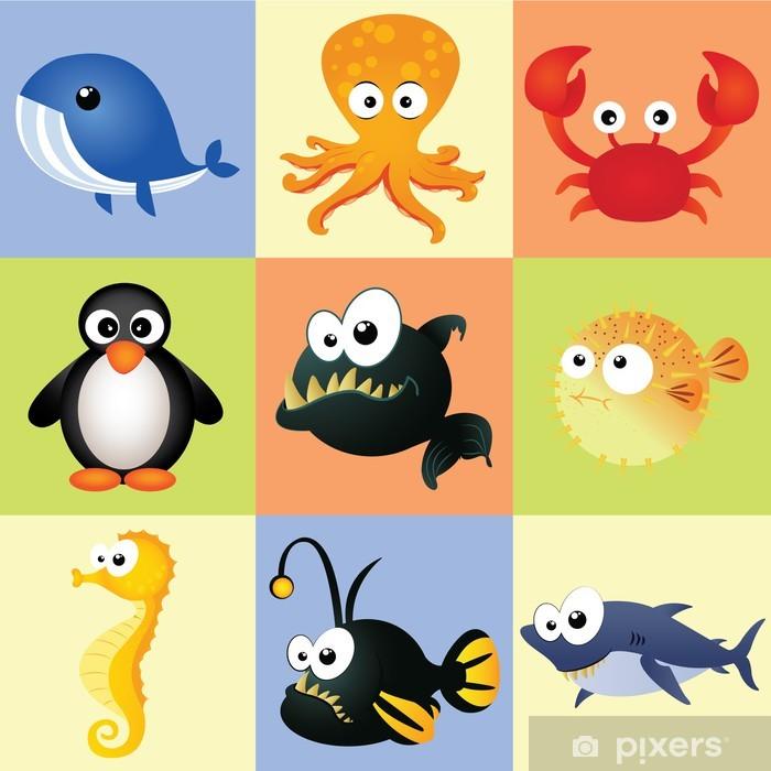 Poster en cadre Animaux aquatiques - Animaux marins
