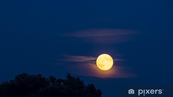 Naklejka Pixerstick Pełnia księżyca - Tematy