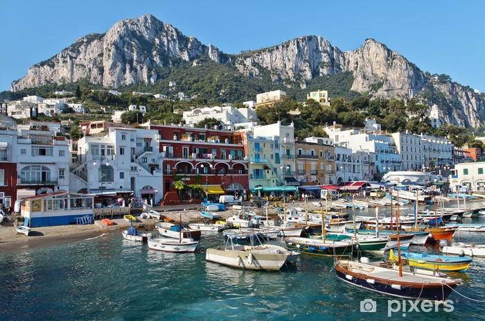 Carta da Parati in Vinile Capri, Marina Grande - Temi