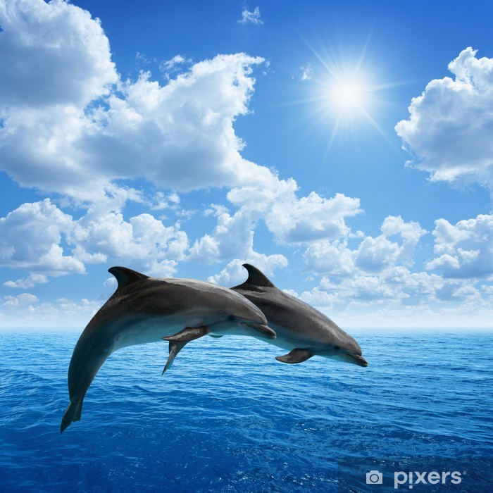 Dolphins jumping Pixerstick Sticker - Dolphins