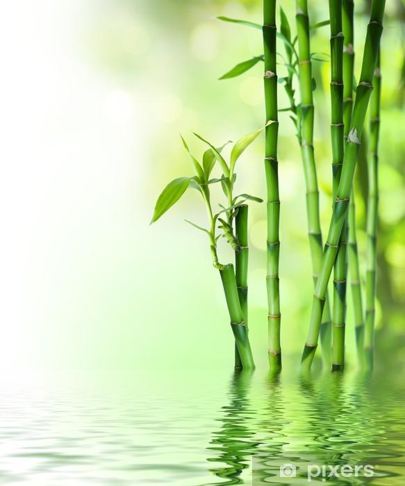 Pixerstick Sticker Bamboe stengels op het water - Stijlen