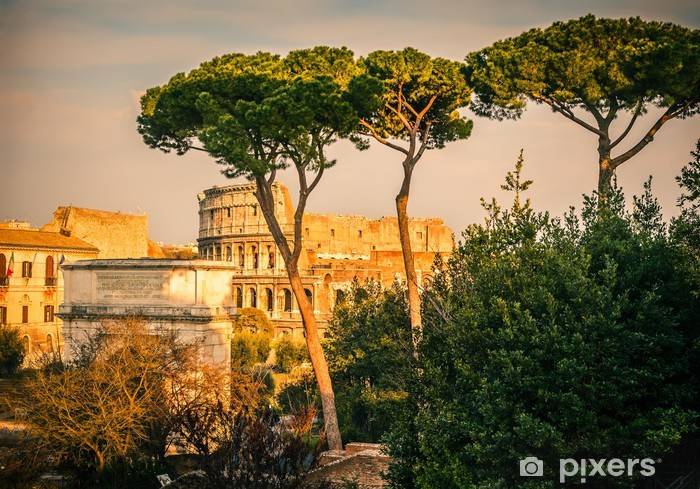 Colosseum at sunset Pixerstick Sticker - Themes