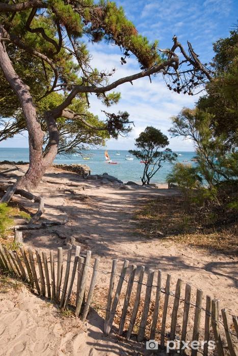 Fototapete Frankreich Vendee Noirmoutier Bois De La Chaise