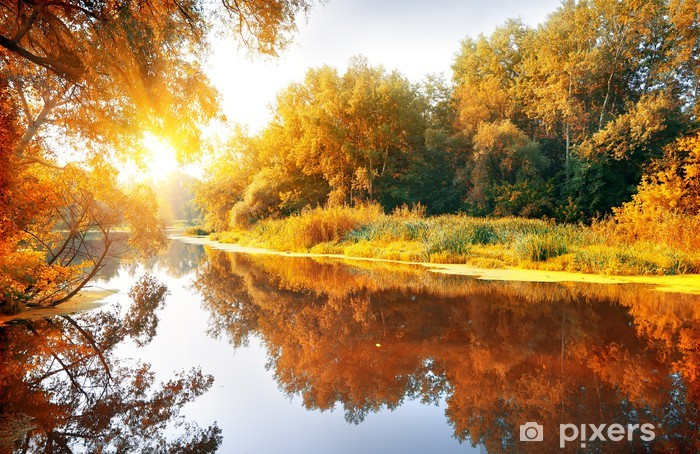 Fotomural Autoadhesivo Río en un bosque encantador otoño - Temas