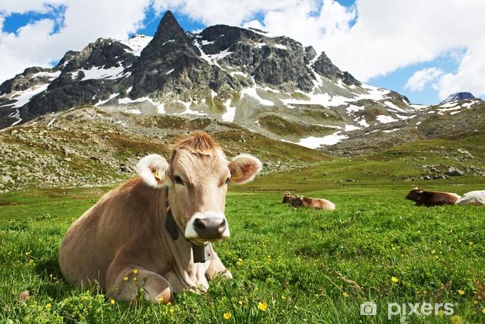 Pixerstick Aufkleber Brown Kuh auf Weide des grünen Grases - Landwirtschaft