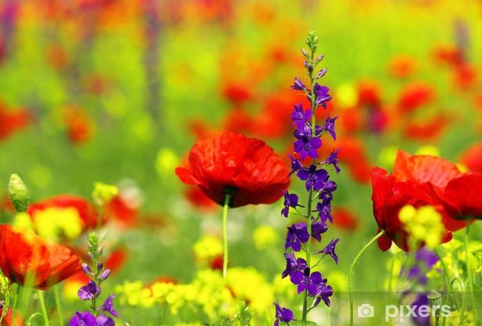 Fotomural Estándar Flores silvestres de verano - Flores