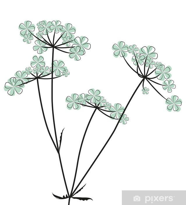 Naklejka Pixerstick Kwiaty polne - Tła