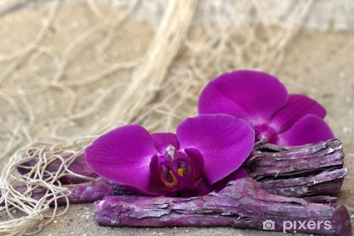 Nálepka Pixerstick Orchidee auf Treibholz - Prázdniny