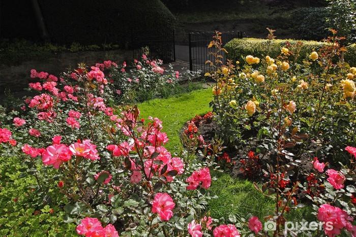 Carta da parati giardino di rose u pixers viviamo per il