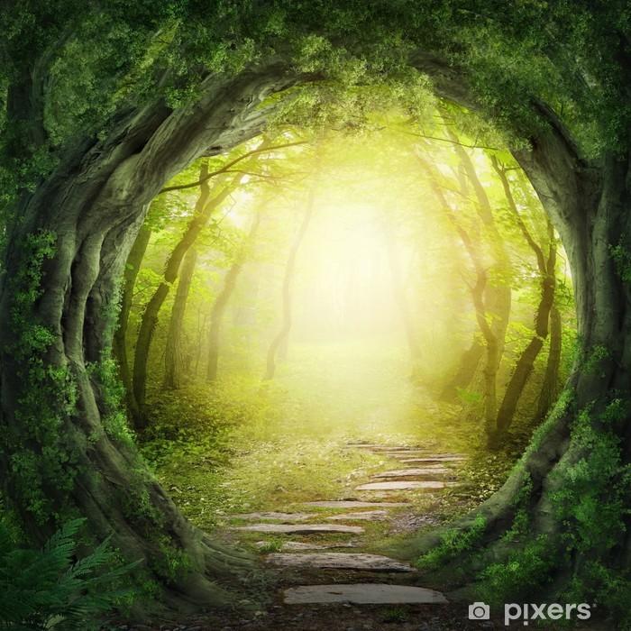 Fototapeta winylowa Droga w ciemnym lesie - Tematy