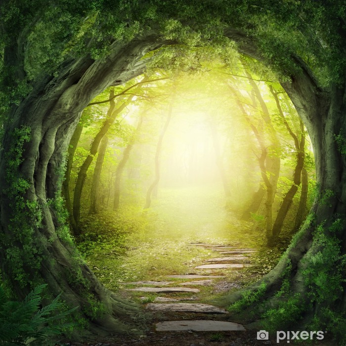 Road in dark forest Poster - Themes