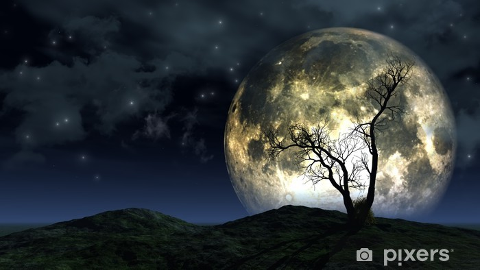 Tree and moon background Vinyl Wall Mural - Themes
