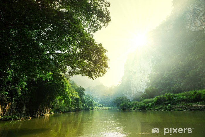 Papier peint lavable Tropical river - Asie