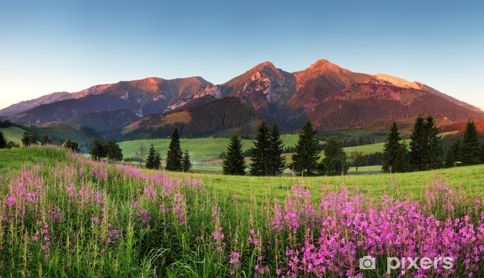 Beauty mountain panorama with flowers - Slovakia Vinyl Wall Mural - Themes