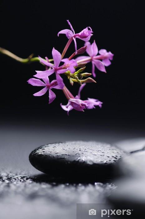Nálepka Pixerstick Terapie kameny s orchidejí větev - Témata