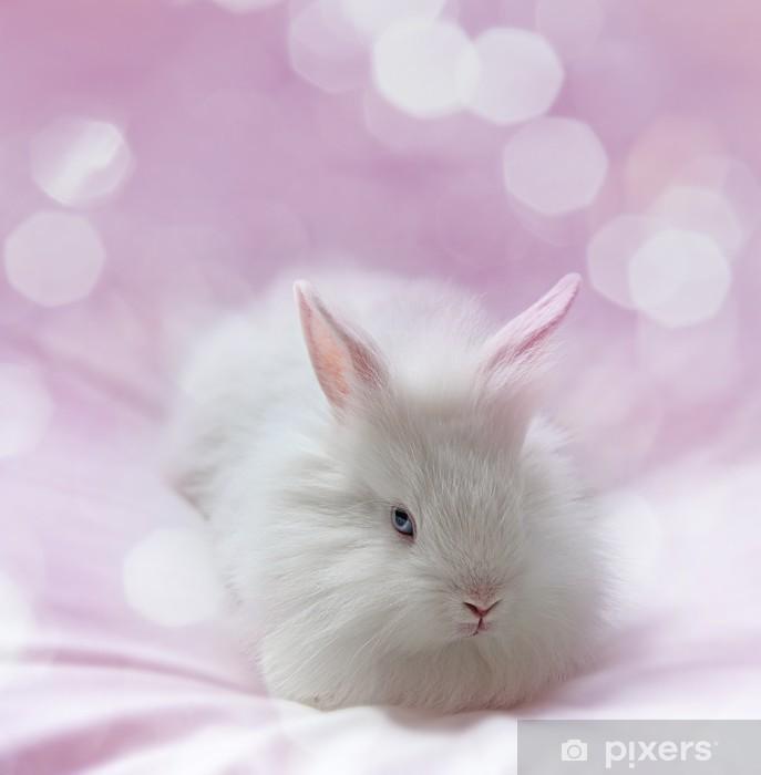 Papier peint vinyle Petit lapin blanc et fond rose - Mammifères
