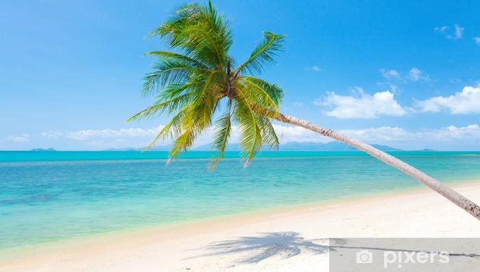 Fotobehang Strand Zee.Fotobehang Strand Met Kokospalm En Zee Pixers We Leven Om Te