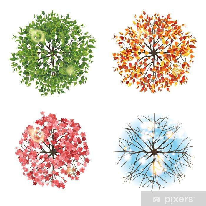 Pixerstick Aufkleber Baum-Symbol in 4 verschiedenen Jahreszeiten - Draufsicht - Bäume
