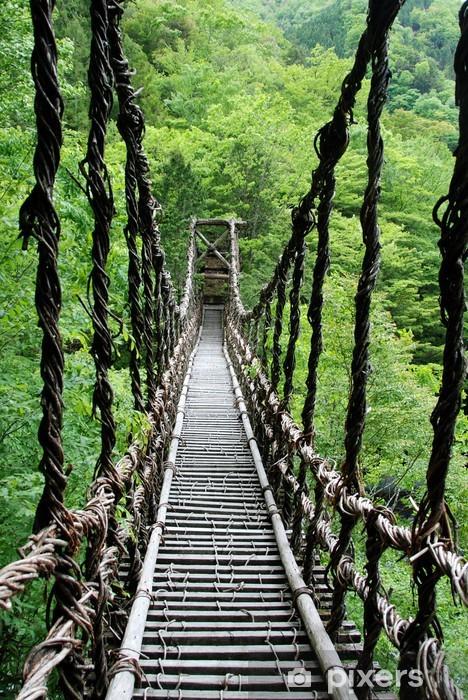 Fototapeta winylowa Pont de lianes Kazura kredytowej-à oku Sikoku, Japonia -