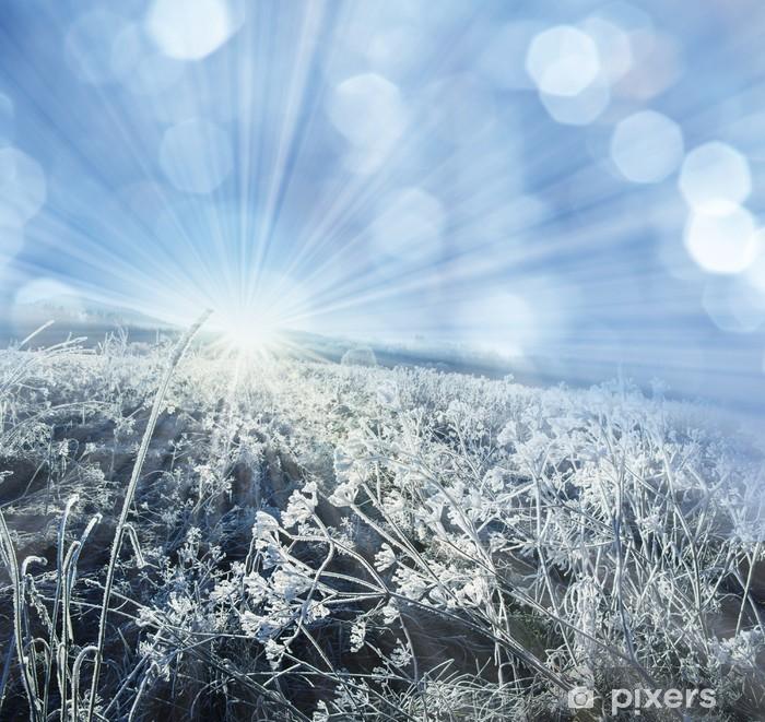 Nálepka Pixerstick Zimní zmrazené rostlin a slunce - Roční období