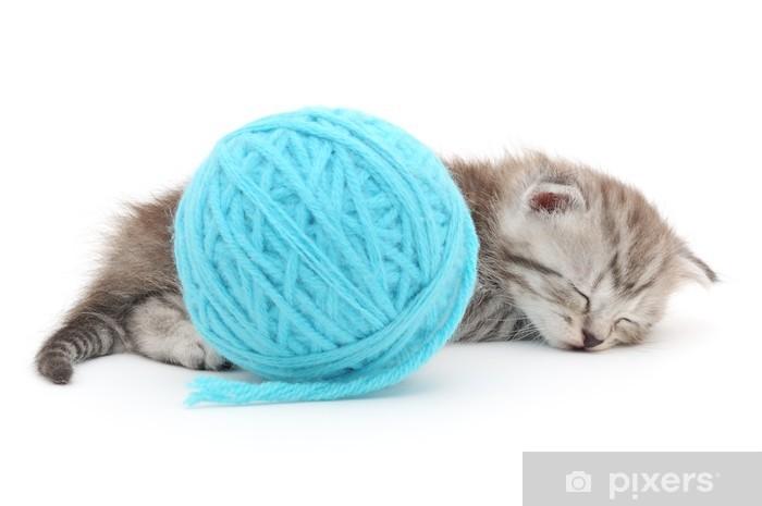Papier peint vinyle Chat avec pelote de laine - Mammifères