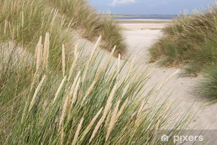 Fototapeta winylowa Widok na plaży z wydmami w Holandii - Holandia