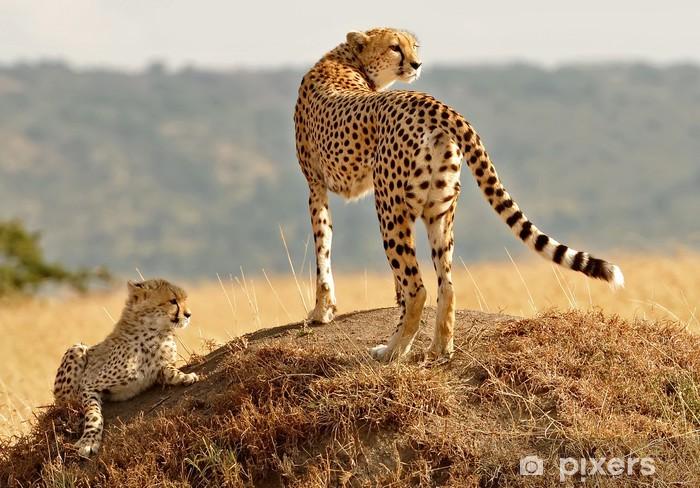 Naklejka Pixerstick Masai Mara Gepardy - Tematy