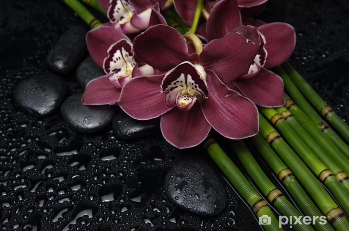 Papier peint vinyle Orchidée rouge et pierres zen et mince bosquet de bambous - Beauté et soins du corps