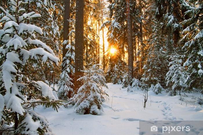 Pixerstick Sticker Winterlandschap - Thema's