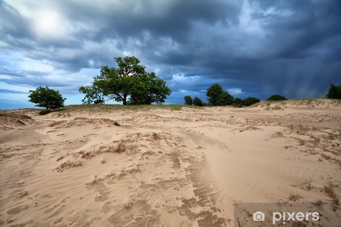 Nálepka Pixerstick Dramatická obloha nad písečnými dunami - Nebe