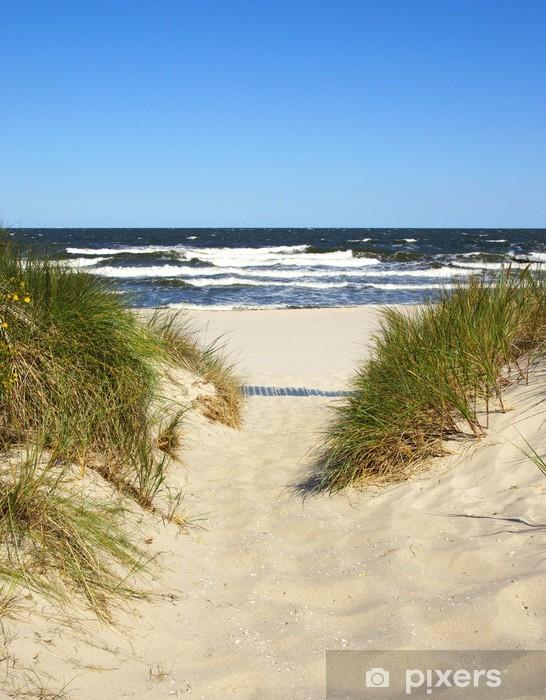 Vinyl Fotobehang De weg naar het strand - Zomer