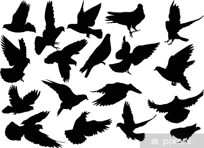 Eighteen Dove Silhouettes Isolated On White Sticker Pixers We Live To Change Ai (adobe illustrator) eps (encapsulated postscript). https pixers ca stickers eighteen dove silhouettes isolated on white 56038705