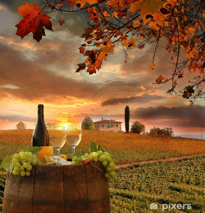 Fotomural Estándar Vino blanco con barell en el viñedo, Chianti, Toscana, Italia - Temas
