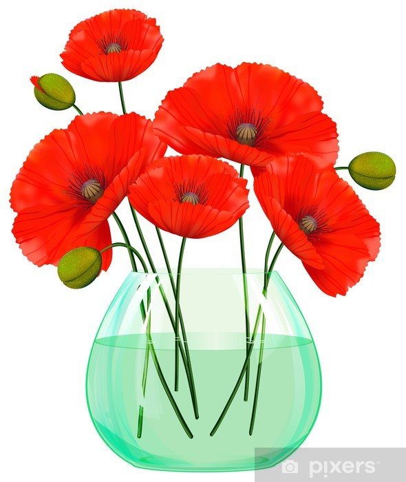 Red Poppies Flowers In Glass Vase Wall Mural Pixers We Live