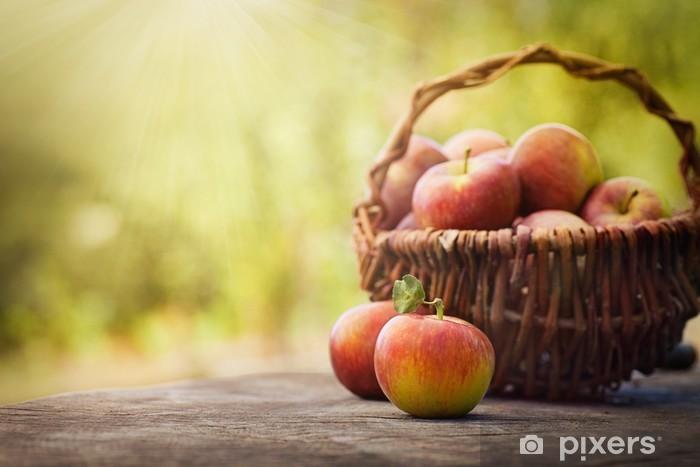 Naklejka Pixerstick Świeżo zebrane jabłka - Owoce