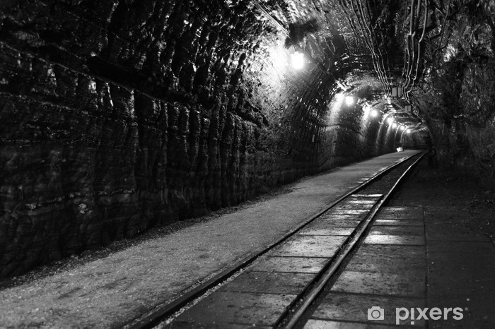 Tunnel in Polish salt mine Bochnia Wieliczka B&W Vinyl Wall Mural - Themes