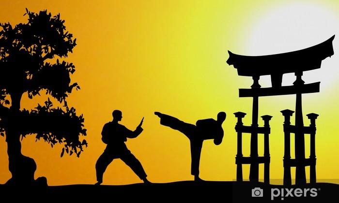 Fototapeta winylowa Martial Arts Asia - Tematy