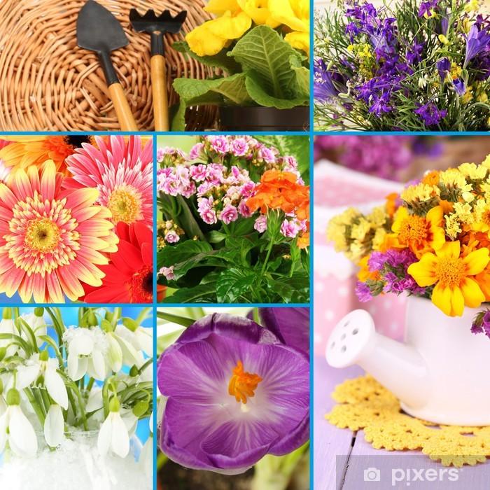 Papier peint vinyle Collage de belles fleurs - Fleurs