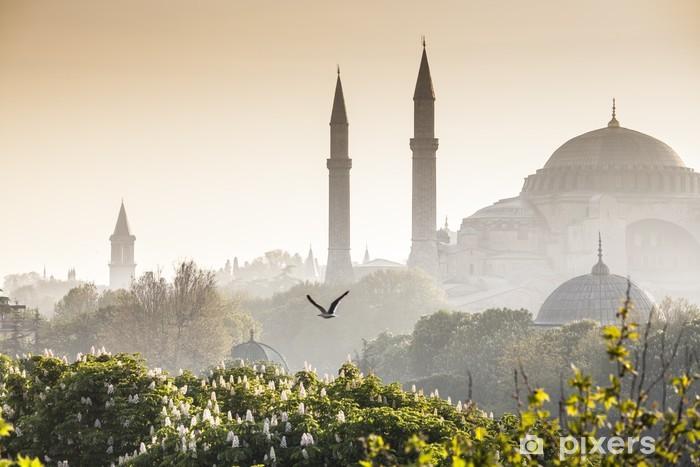 Pixerstick Sticker Sultanahmet Camii / Blue Mosque, Istanbul, Turkey - Stijlen