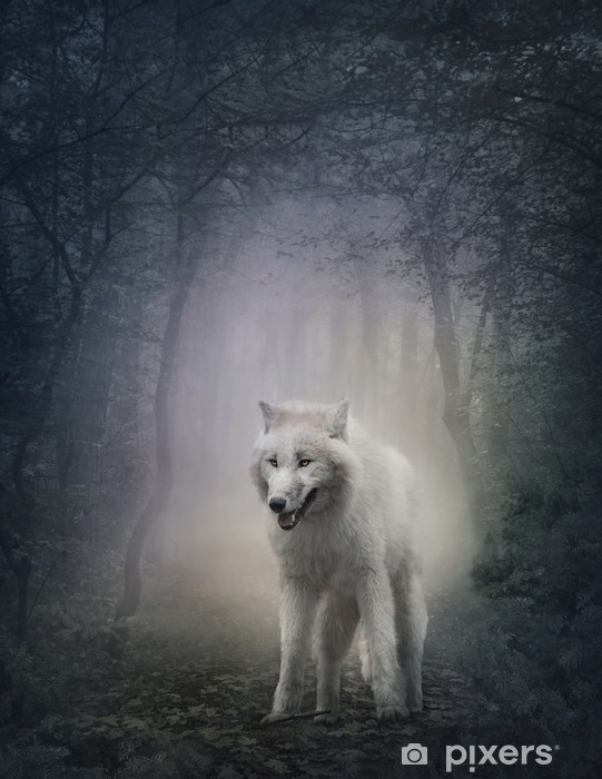 Papier peint vinyle White wolf -