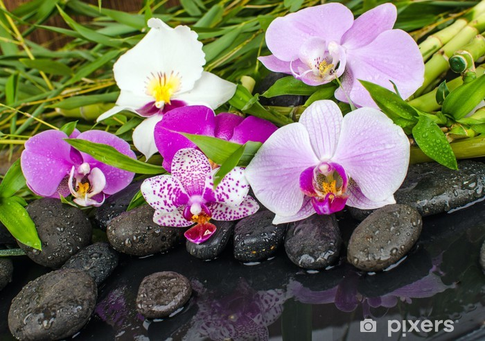 Sticker Pixerstick Orchidées, des pierres, de bambou, de l'eau - Beauté et soins du corps