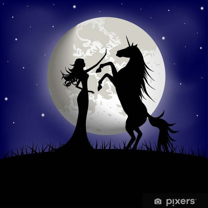 Silhouette of beautiful girl and unicorn on a background of moon Wardrobe Sticker - Fantasy