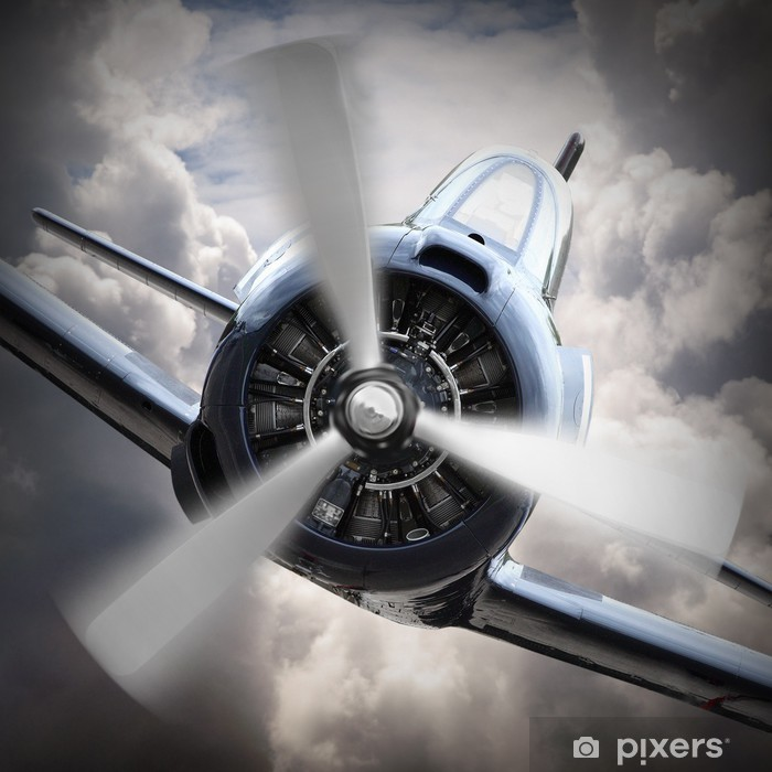 The fighter. Vinyl Wall Mural - Themes
