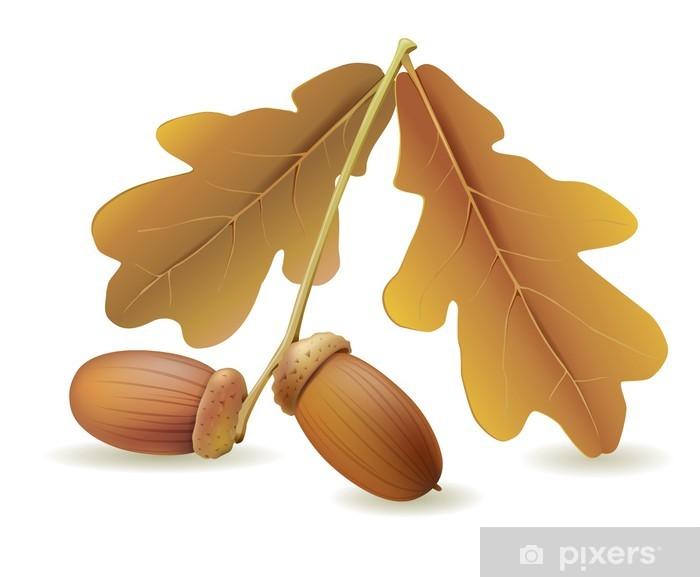 Acorns with leaves Vinyl Wall Mural - Seasons